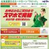 北海道銀行カードローン「ラピッド」イメージ